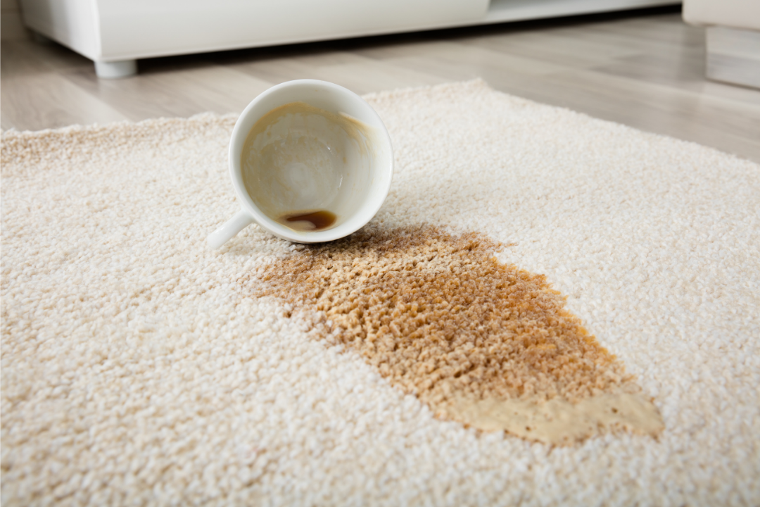 4 common carpet stains and what to do about them